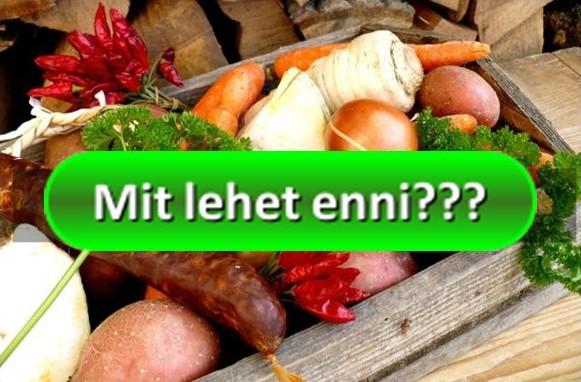 mit lehet enni fogyókúra alatt mit tudok felhasználni a zsírégetésre?