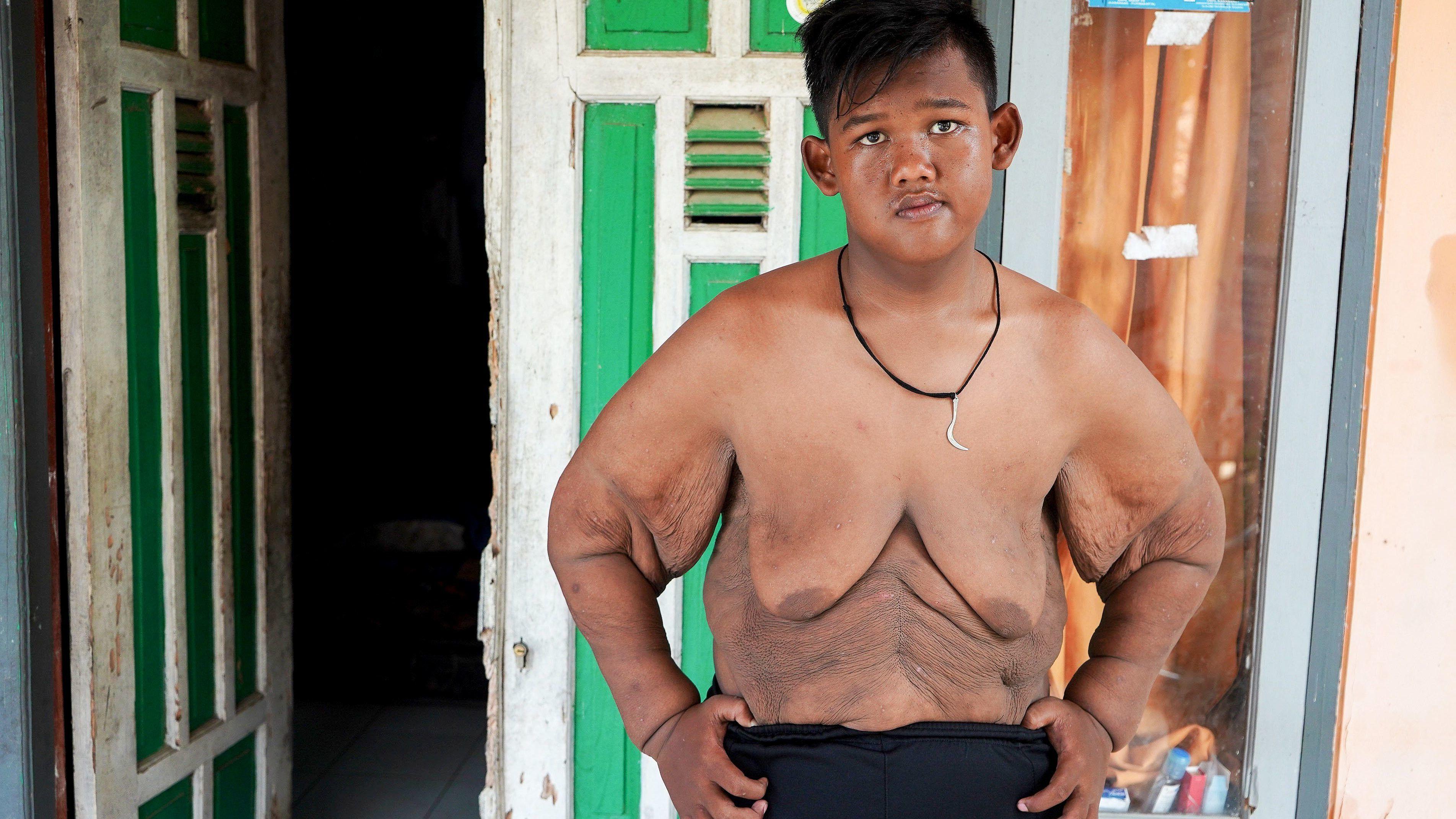 Családfa - Kövér család - MyHeritage