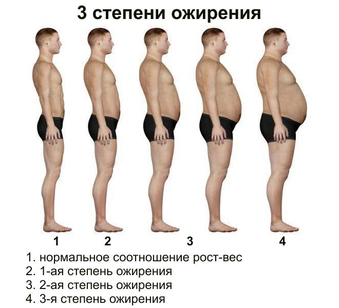 12020kalóriás étrend rendelés fogyni 10 kg 2 hónap alatt