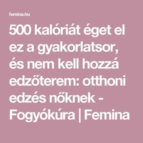 éget zsírt 500