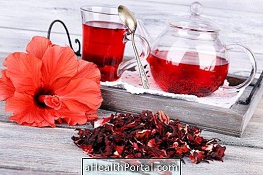 Vannak negatív hatása is a hibiszkusz teának amikről tudnod kell!