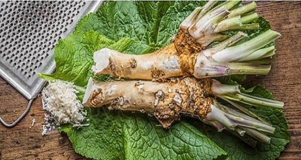az élet kertje zsírégető tacoma karcsúsító