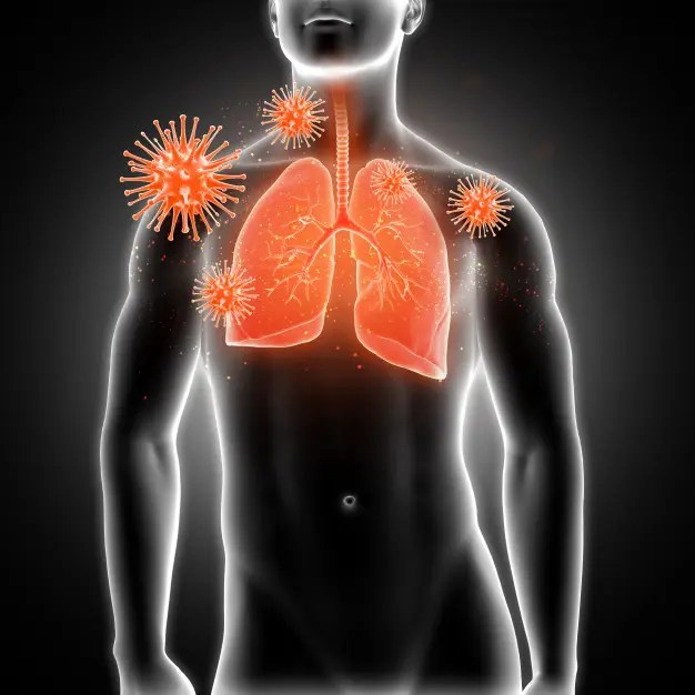 SIKERTÖRTÉNETEK | Orvosi fogyókúra - Insumed