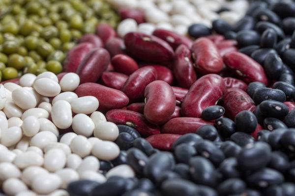 Ez a 6 legszuperebb zsírégető étel! | Well&fit