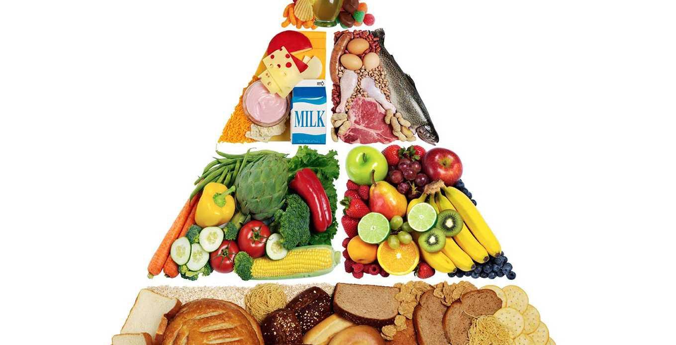 Napi kalóriaszükséglet kalkulátor | handelsplus.hu