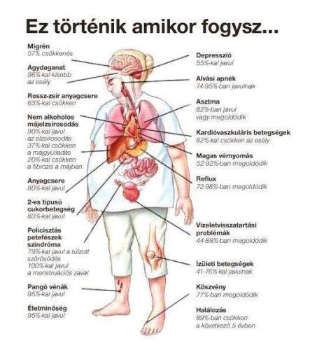 fogyás szénafű egészség