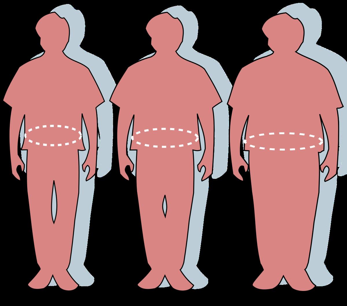 elveszíti a testzsírt, mit kell enni a legjobb szálastakarmány a fogyáshoz