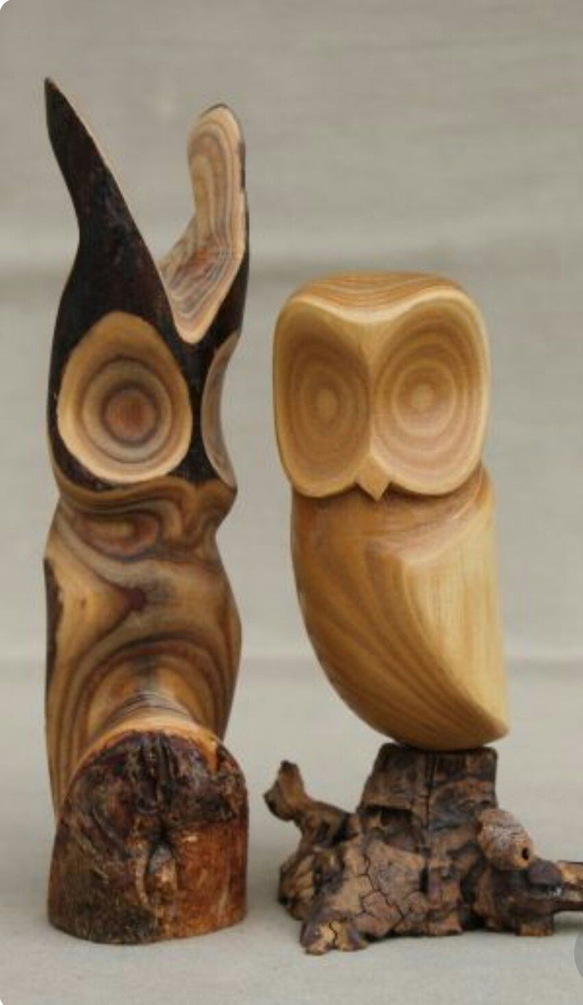 Freya wedding horn , matched pair pic6 by Bonecarverpm | Koponya, Faragás, Agancsok