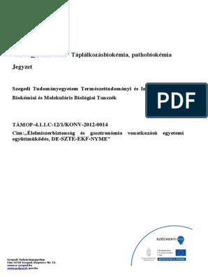 mens egészségügyi zsírégető kézikönyv